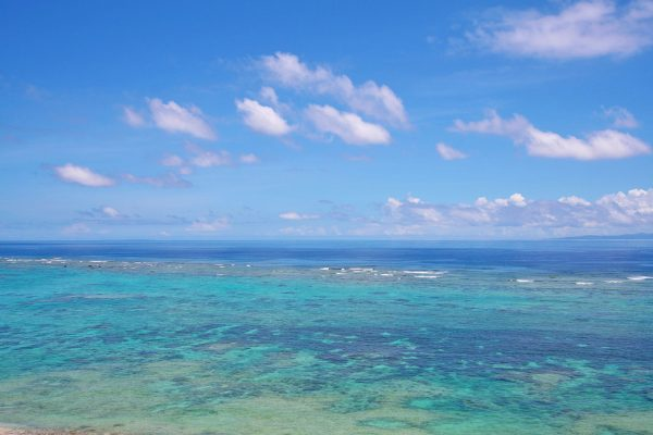 沖縄 8月