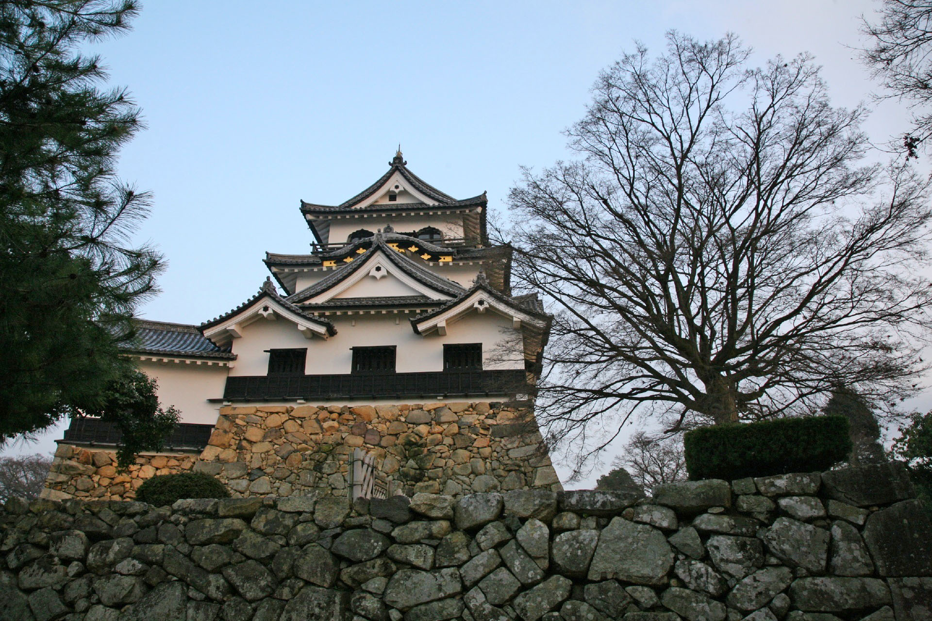 Hikone castle in Shiga, Japan